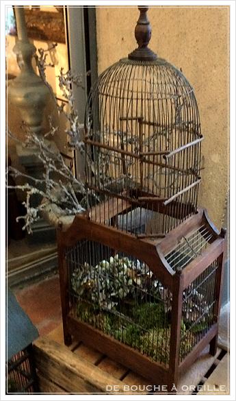 cage à oiseaux 古い鳥かご バードケージ _d0184921_13364815.jpg
