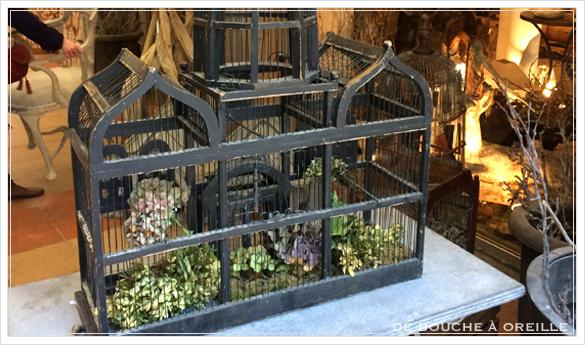 cage à oiseaux 古い鳥かご バードケージ _d0184921_1337041.jpg