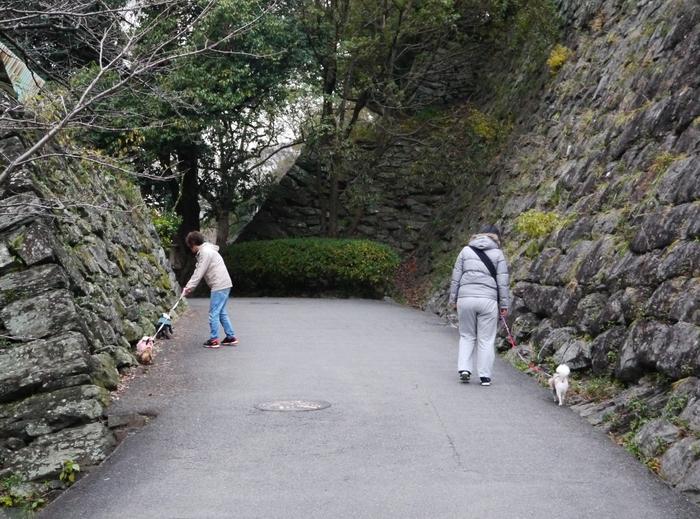 和歌山城公園にて_b0093754_11431799.jpg