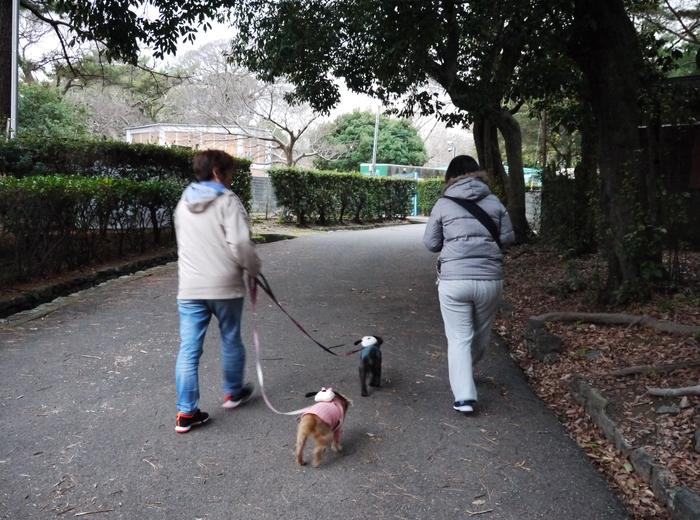 和歌山城公園にて_b0093754_11442663.jpg