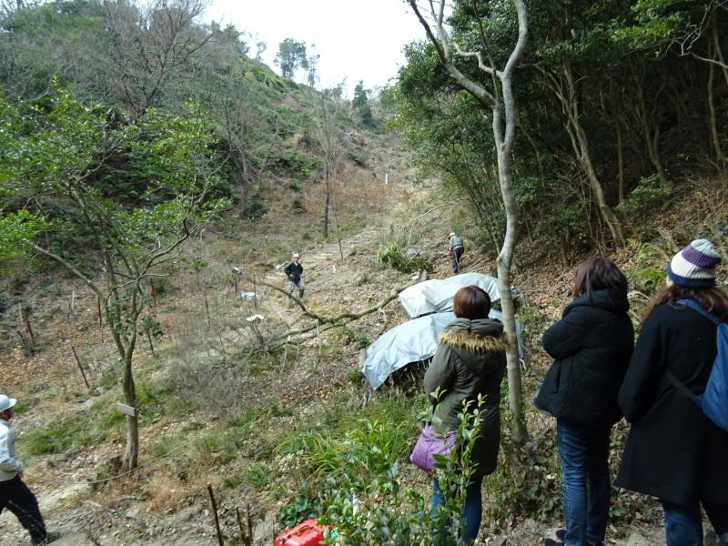 和歌山市立野崎西小学校PTA 幹事さんが下見に来られました・・・孝子の森  by  (TATE-misaki)_c0108460_21374614.jpg