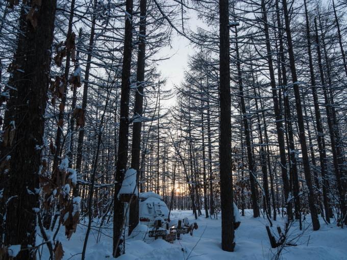 エゾリス君で始まり・・夕暮れで終わる・・真冬の一日。_f0276498_23533598.jpg