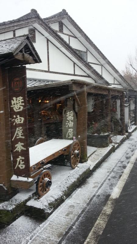 雪ですね_c0357333_16353679.jpg