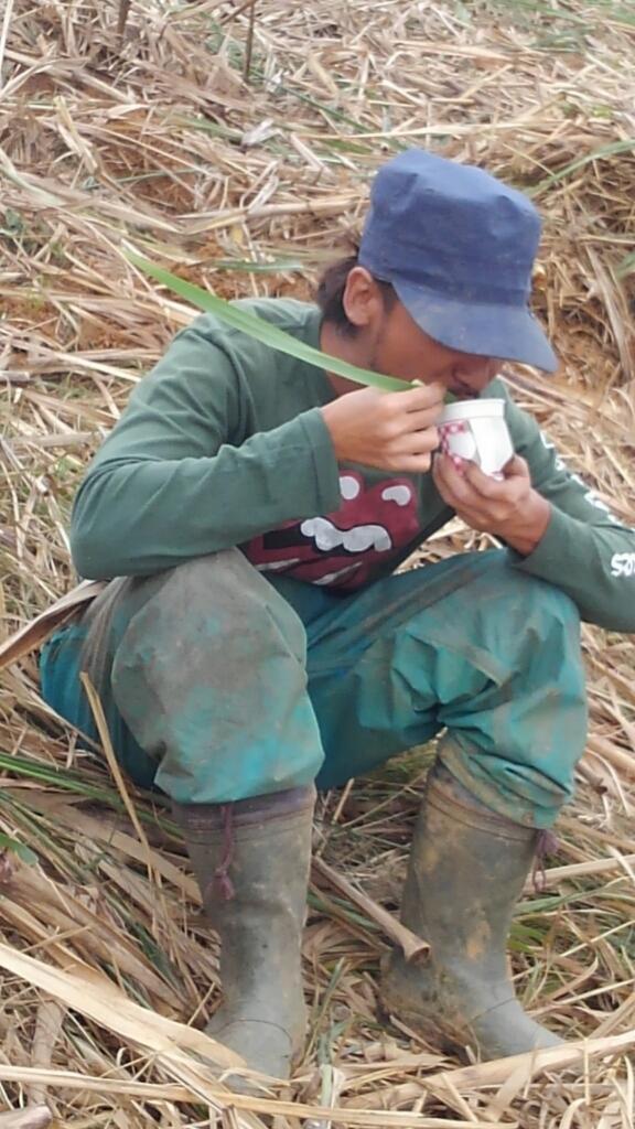 農民の知恵_e0131462_22032712.jpg