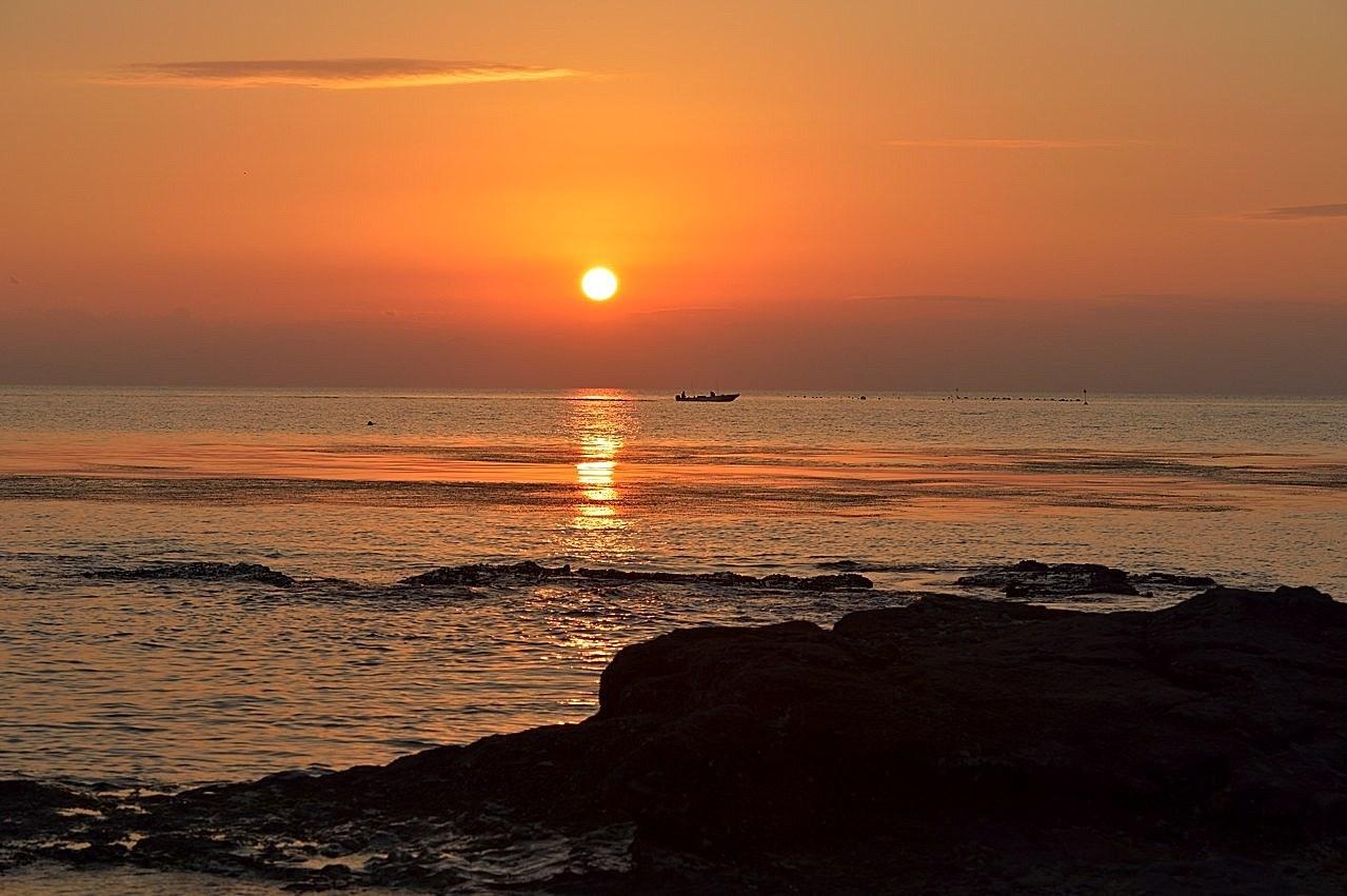 毎年2日に知多半島へ_c0330563_23132924.jpg