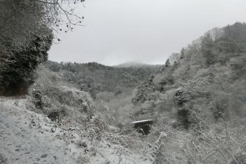 雪のMTB!_b0332867_00153517.jpg