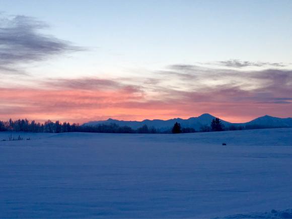 今朝も凍れました_f0096216_08020630.jpg