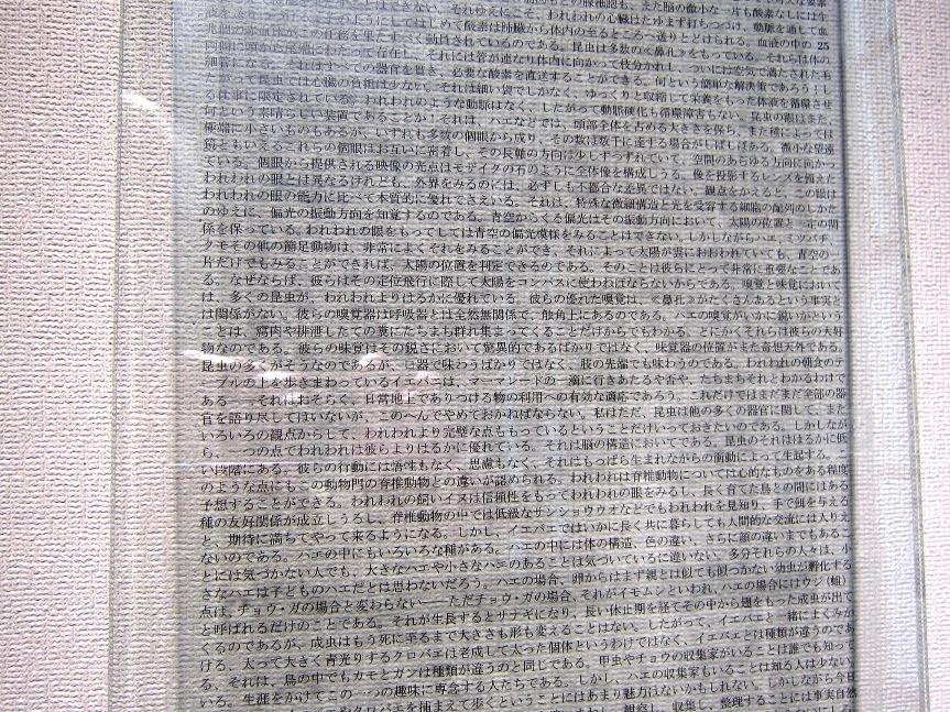 f0126829_16194919.jpg