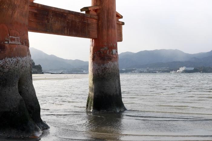 干潮の大鳥居 広島旅行 - 9 -_f0348831_15312233.jpg