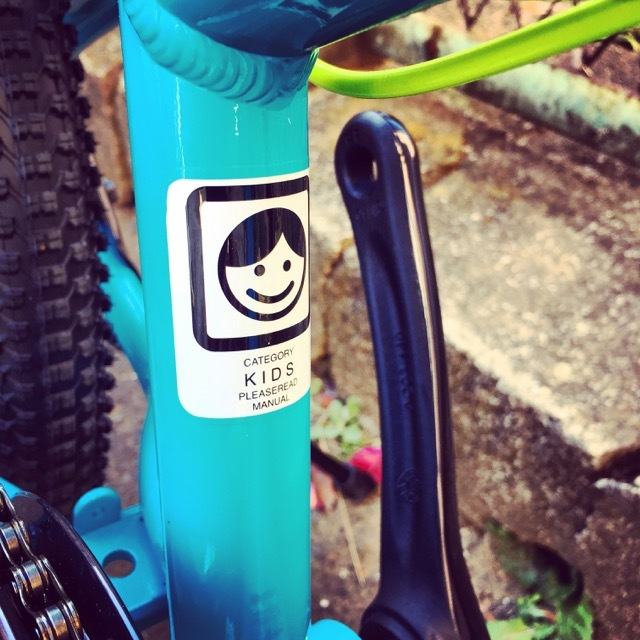 2017 CENTURION センチュリオン  R'BOCK 20 SHOX R'ボック 20 ショックス キッズバイク 子供自転車 リピトキッズ 20インチ KIDS おしゃれ子供車_b0212032_20485201.jpg