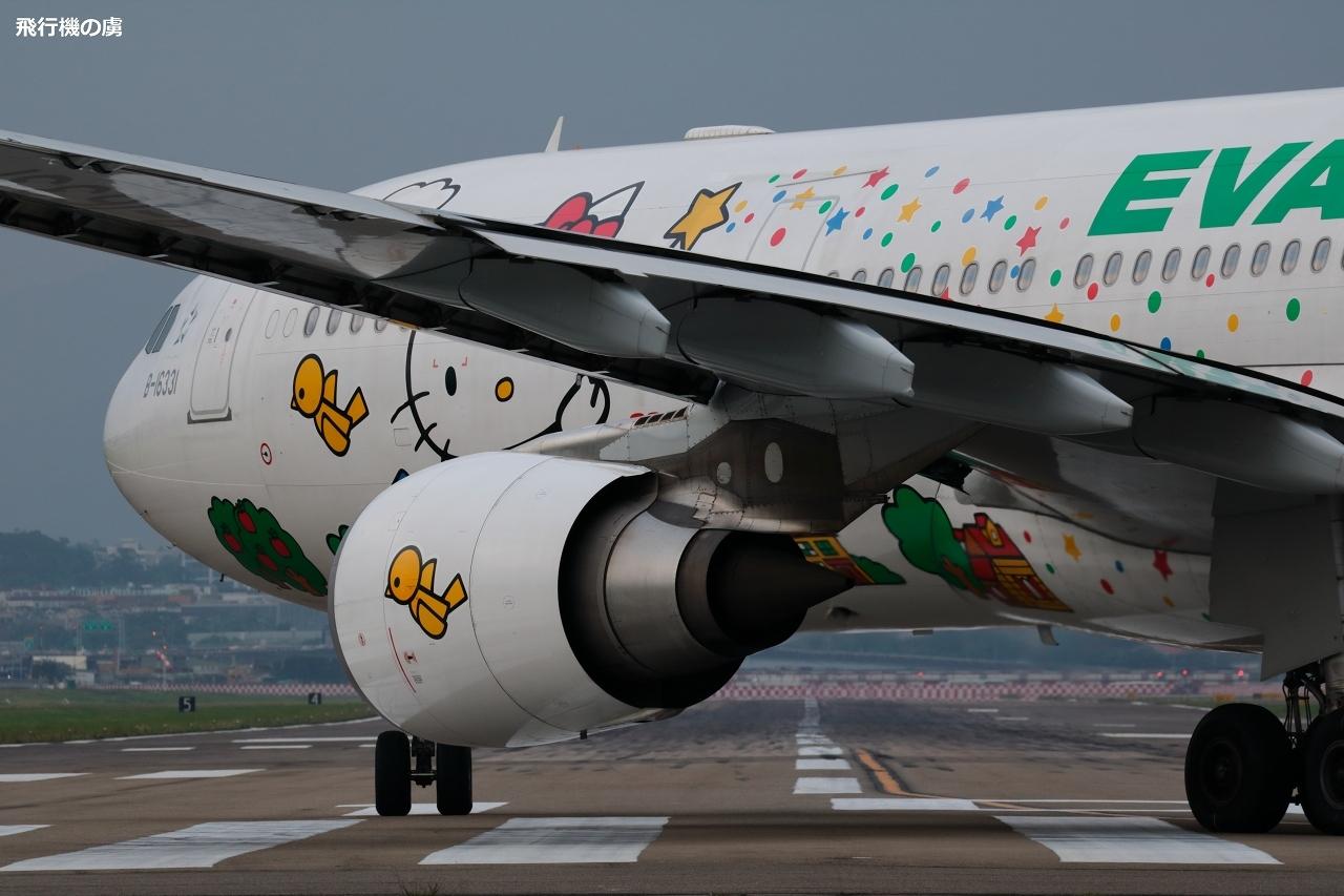 曇天と寒さと誘導灯 ハローキティ塗装機  A330  エバー航空(BR)_b0313338_20242812.jpg