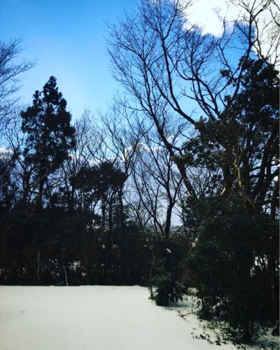 雪_a0197647_14084732.jpg