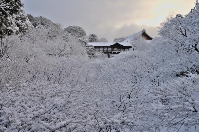 京都  東福寺  1/15 雪積もったけど1時間半しか時間ないの巻_f0021869_00330686.jpg