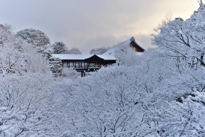 京都  東福寺  1/15 雪積もったけど1時間半しか時間ないの巻_f0021869_00333733.jpg
