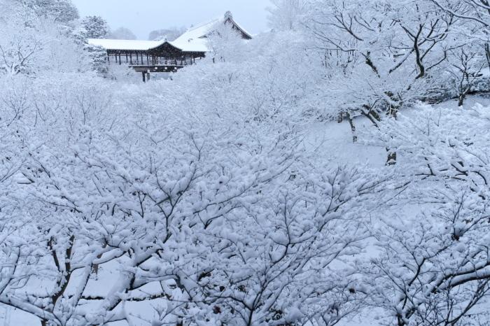 京都  東福寺  1/15 雪積もったけど1時間半しか時間ないの巻_f0021869_00344793.jpg