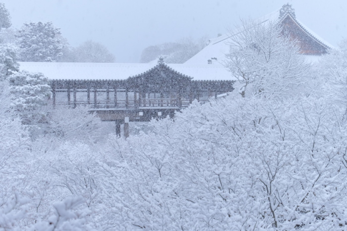 京都  東福寺  1/15 雪積もったけど1時間半しか時間ないの巻_f0021869_00353859.jpg