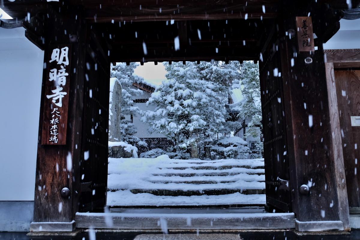 京都  東福寺界隈  1/15 雪積もったけど1時間半しか時間ないの巻_f0021869_22141891.jpg