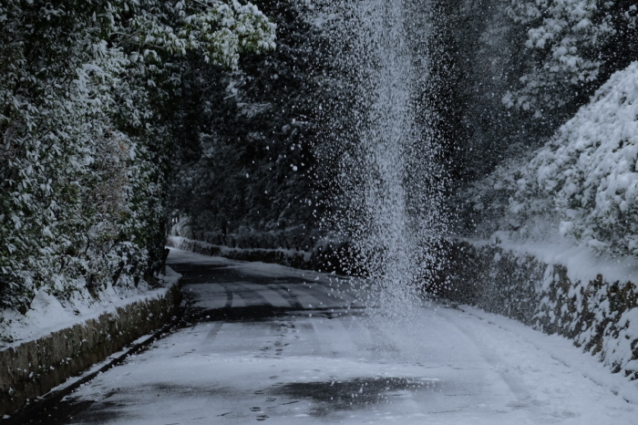 京都  東福寺界隈  1/15 雪積もったけど1時間半しか時間ないの巻_f0021869_22190720.jpg