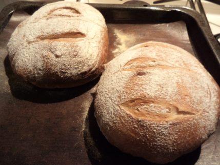 レーズンとチーズのパン・全粒粉パン_b0207284_218016.jpg