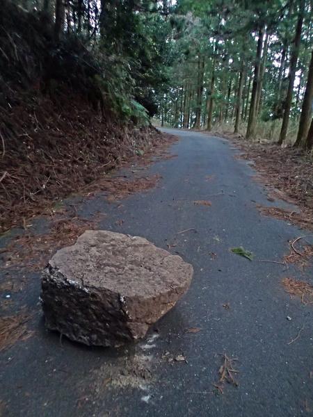 ジョギングコースに落石_a0026295_1653925.jpg