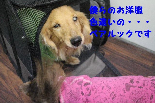 b0130018_1555241.jpg