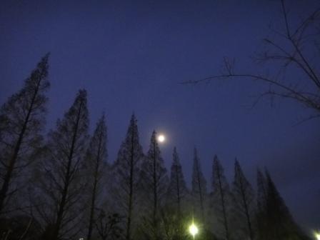 第22回大阪緑内障研究会 その2 (990)_f0088231_10414443.jpg