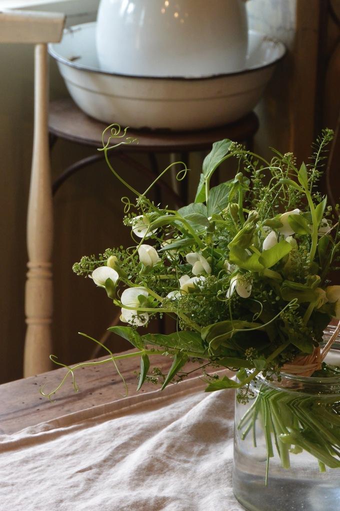 豆の花。。。_a0229658_14563341.jpg
