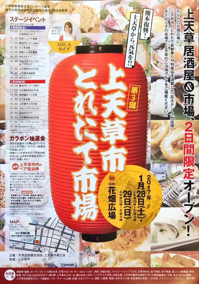 にんじん 種取りの親株_e0181260_20262748.jpg