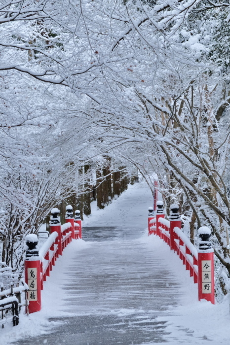 京都  東福寺界隈  1/15 雪積もったけど1時間半しか時間ないの巻_f0021869_22212638.jpg
