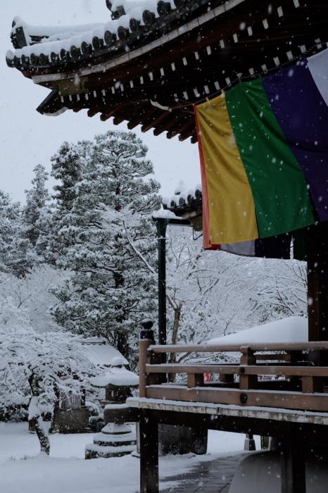 京都  東福寺界隈  1/15 雪積もったけど1時間半しか時間ないの巻_f0021869_22230612.jpg
