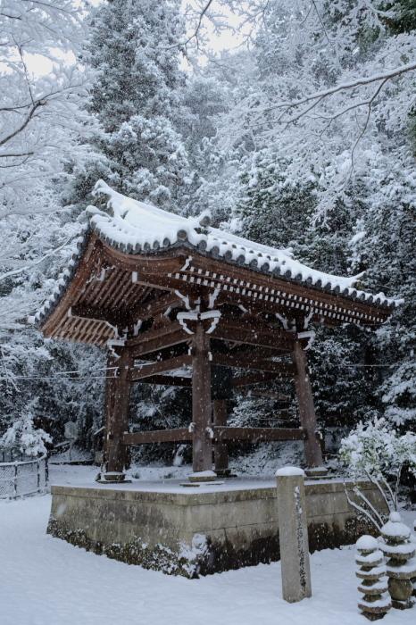京都  東福寺界隈  1/15 雪積もったけど1時間半しか時間ないの巻_f0021869_22232372.jpg