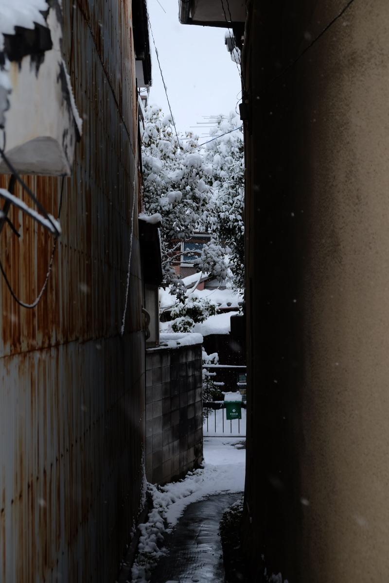 京都  東福寺界隈  1/15 雪積もったけど1時間半しか時間ないの巻_f0021869_22235781.jpg
