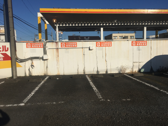 らむ動物病院の駐車場、続々増えてます♡_c0245679_09023313.jpg