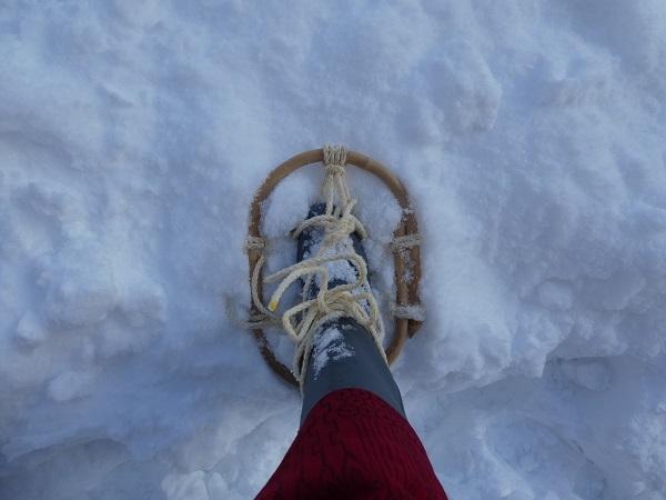 ❅、雪、ゆき_e0365880_20344638.jpg