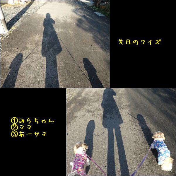 e0234881_2015358.jpg