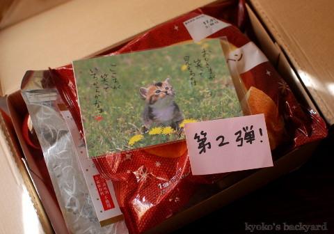 信州からの素敵な小包♪_b0253205_06015534.jpg