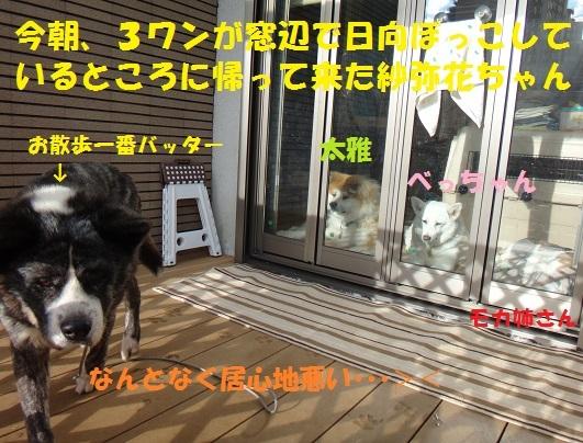 f0121712_00031020.jpg