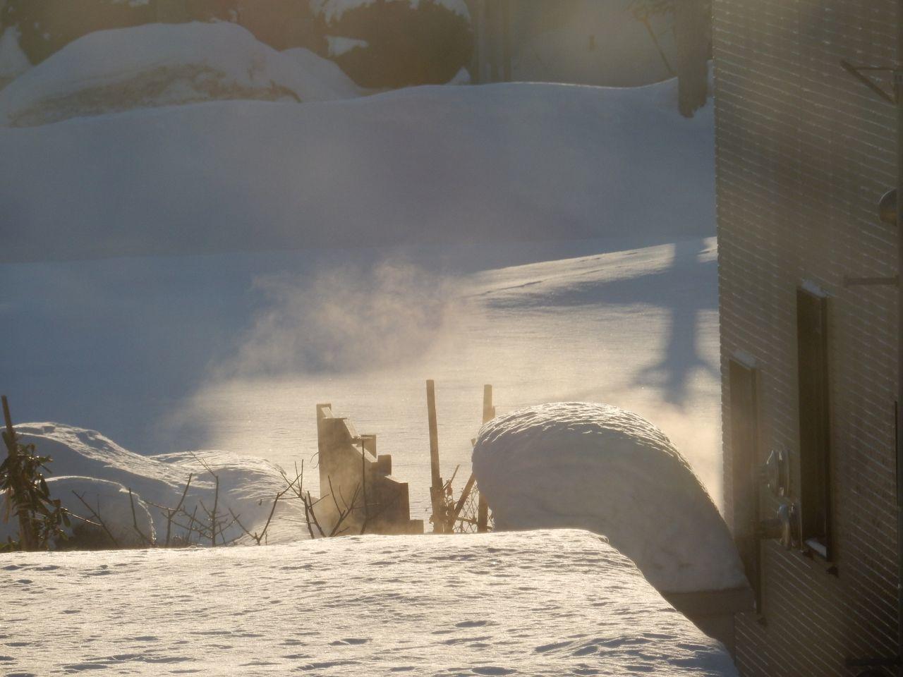 何度目の「この冬一番の寒さ」だろう_c0025115_20462406.jpg
