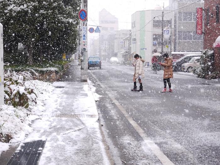 三年ぶりの雪便り (上) _b0093754_22401217.jpg