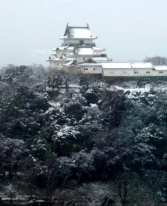 三年ぶりの雪便り (上) _b0093754_2320499.jpg