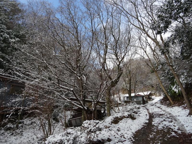 孝子の森も うっすらと雪化粧  by  (TATE-misaki)_c0108460_20404791.jpg