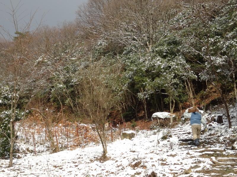 孝子の森も うっすらと雪化粧  by  (TATE-misaki)_c0108460_20423121.jpg