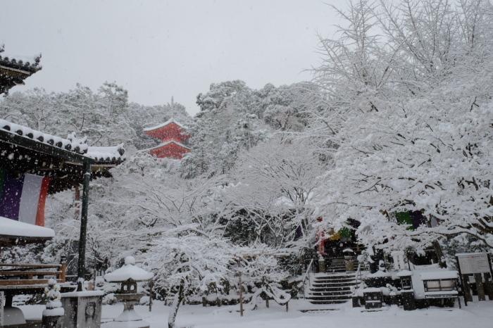 京都  今熊野観音寺  1/15 雪積もったけど1時間半しか時間ないの巻_f0021869_22285718.jpg