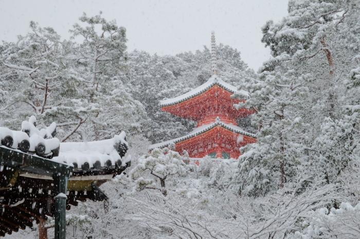 京都  今熊野観音寺  1/15 雪積もったけど1時間半しか時間ないの巻_f0021869_22294281.jpg
