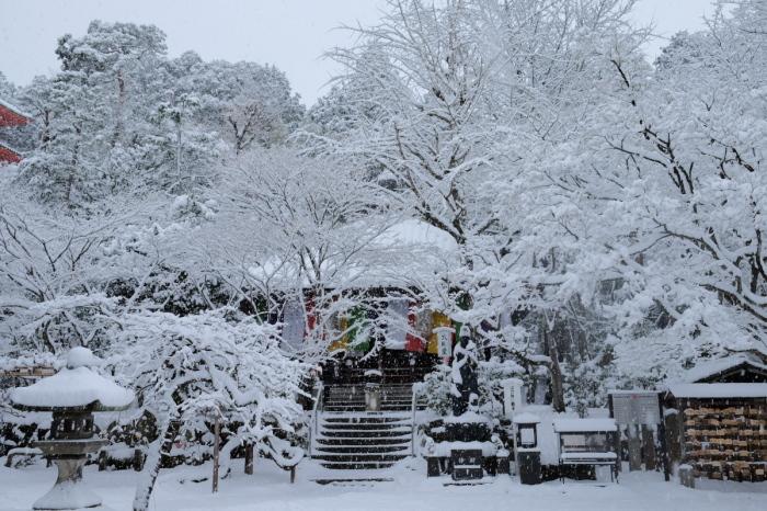 京都  今熊野観音寺  1/15 雪積もったけど1時間半しか時間ないの巻_f0021869_22334212.jpg