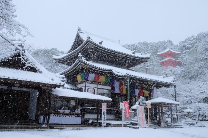 京都  今熊野観音寺  1/15 雪積もったけど1時間半しか時間ないの巻_f0021869_22342260.jpg