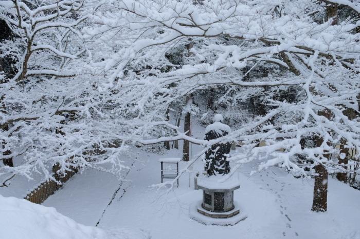 京都  今熊野観音寺  1/15 雪積もったけど1時間半しか時間ないの巻_f0021869_22344279.jpg