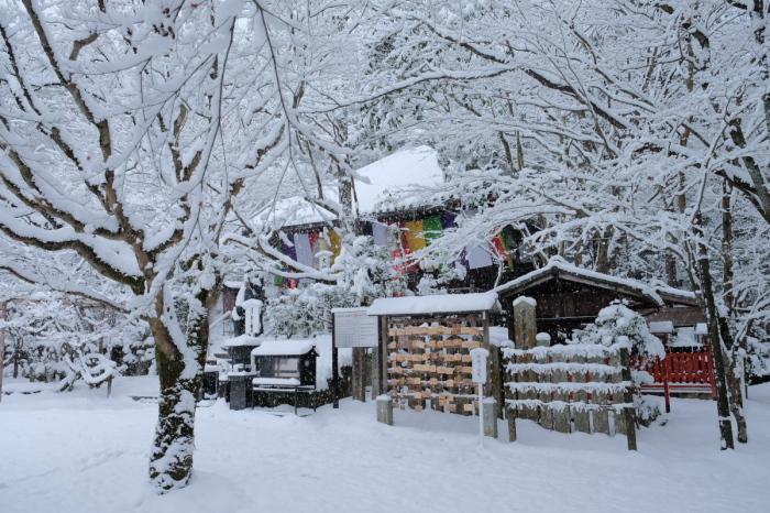 京都  今熊野観音寺  1/15 雪積もったけど1時間半しか時間ないの巻_f0021869_22345694.jpg