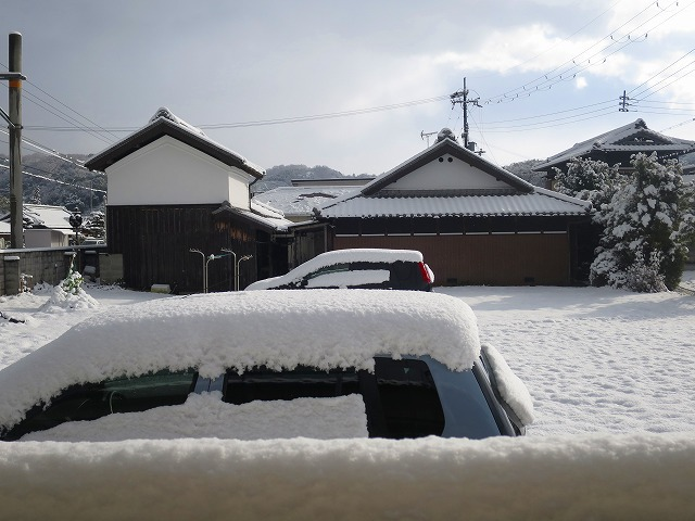 3年目の大雪_b0326483_19583566.jpg