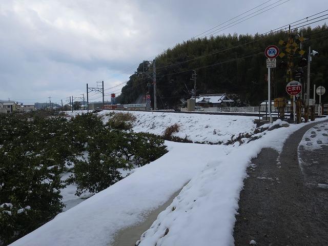 3年目の大雪_b0326483_20013500.jpg